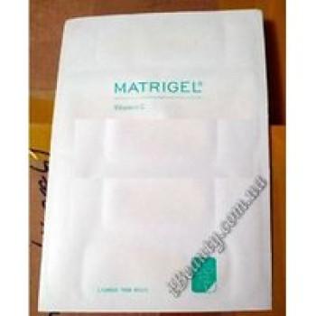 Матриджель с витамином С Matrigel Vit.C Janssen, 1 шт