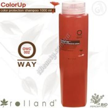 Шампунь для окрашеных волос Rolland, 1000 мл