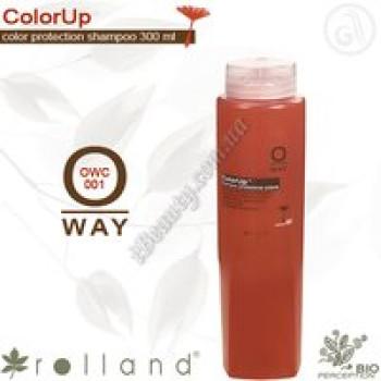 Шампунь для окрашеных волос Rolland, 300 мл