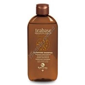 Очищающий шампунь для жирной кожи головы - CLARIFYING SHAMPOO Tecna, 250 мл