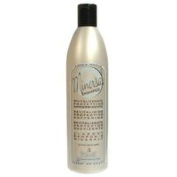 Шампунь с минералами для сухих волос  - WONDER SHAMPOO MINERSAL Gestil, 500 ml